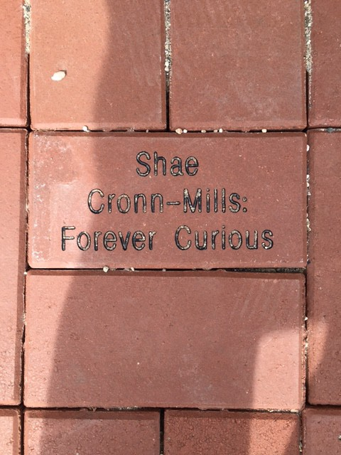 "An engraved brick that says ""Shae Cronn-Mills: forever curious."""